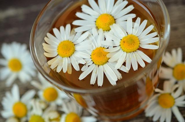 heřmánkové květy
